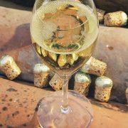 14 Champagne 4 LBR 181006 Laurentbecotruiz.net