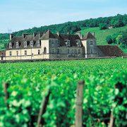 Bourgogne Clos de Vougeot
