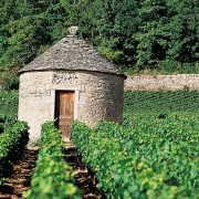 Bourgogne cabotte 2