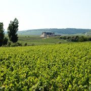 Bourgogne vignoble autour du Clos de Vougeot couverture région