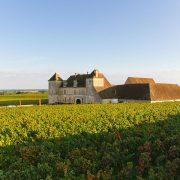 TOKELA JimRosemberg Bourgogne 33