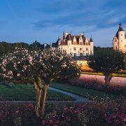 22 Loire 15 LBR 300708 Laurentbecotruiz.net