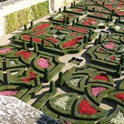 Val de Loire Jardins de Villandry 2