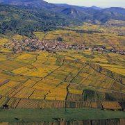 Alsace les villages sertis par la vigne 1024x684