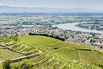 The Rhône Valley